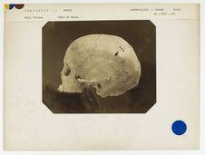 Indonésie : crâne de Dayak, Bornéo, n° 2349. Don de feu Prüner-Bey