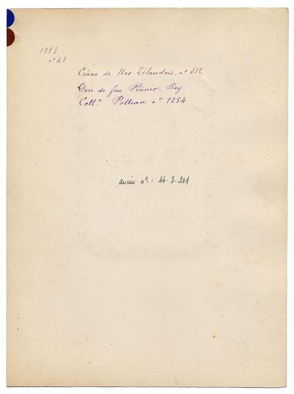 Mélanésie. Nouvelle-Zélande : crâne de Néo-Zélandais, n° 812. Don de feu Prüner-Bey