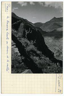 Les terrasses hautes au dessus de la vallée