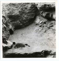 Grotte Fell : foyer vieux de 10 000 ans avec charbons, galets, os de guanaco...