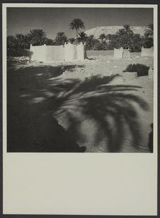 Vue sur le vieux ksar d'El Goléa, Sud algérien