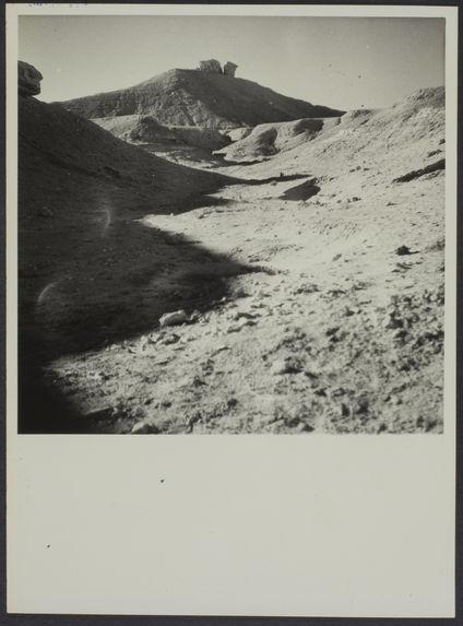 Paysage aux environs d'El Goléa, Sud algérien