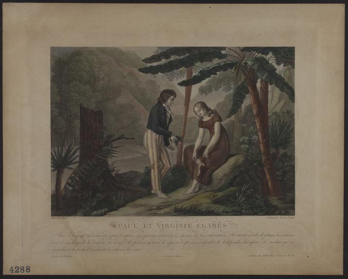 Paul et Virginie égarés