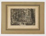 Forêt de la Guyane