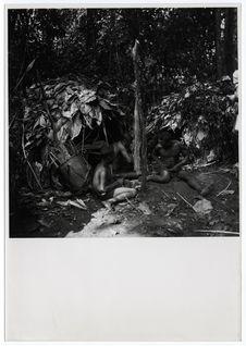 Pygmées Babinga-Babenzélé