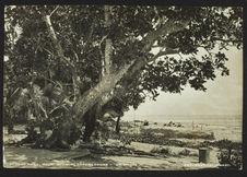 At Pago Pago, Savo, showing Guadalcanar - Solomons