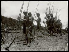 Les hommes font les poquets aux bâtons à fouir