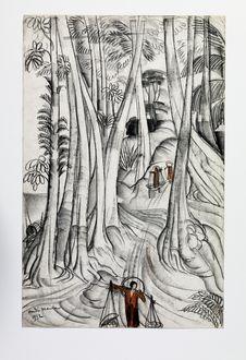 Un chemin à travers la forêt