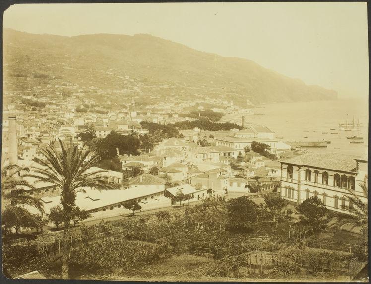 Funchal [vue de la ville et de la mer]