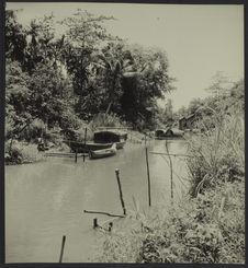 Sans titre [Siam Réap. Sampan à gauche. Rivière dans la forêt d'Angkor]