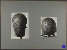 Tonkin : collection Mansuy - Crâne de Lang Cuom n°4
