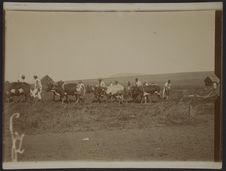 Les labours à la charrue à Ankazobe