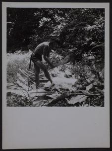Sans titre [homme coupant du bois dans la forêt]