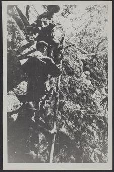 Sans titre [hommes sur une échelle formée d'un tronc d'arbre à encoches]