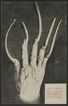 Tonkin - Hanoï - La main d'un Lettré annamite