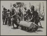 Quelques pygmées du territoire de Poko dans l'Uele occupés à battre les tambours...