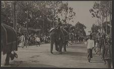 Défilé du cortège royal avenue Mouhot (Les éléphants)