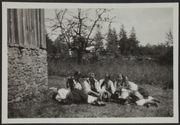 Jeunes filles ukrainiennes de Kuczuriŭ Malej. Bukovine