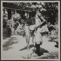 Pondichéry. Baladin avec son bœuf savant