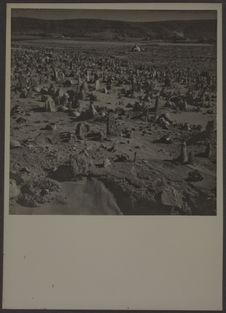 Cimetière musulman de Ghardaïa