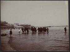 Pêcheurs à Tanger