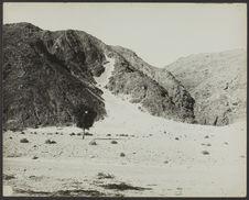 Sans titre [paysage montagneux avec un arbre et une coulée de sable ?]