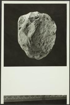 Chellah. Sphéroïde martelé, très émoussé. Salétien de Rabat