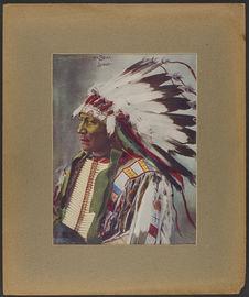 Chief Hollow Horn Bear. Sioux