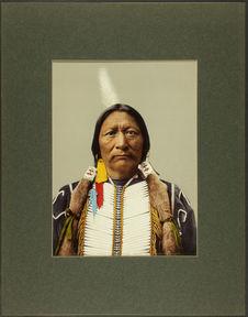 Buckskin Charlie, sub-chief of the Utes