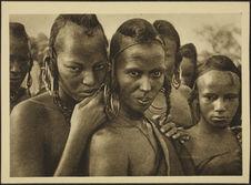 Tchad. Femmes Bororo de Léré