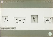 Sans titre [panneau d'exposition du Chicago Museum of Natural History]