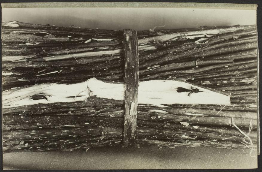 Sans titre [fabrication du papier : fagot de bois]