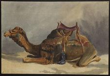 Recto : Chameau (Smyrne)Verso : Sans titre [bateau à voile]