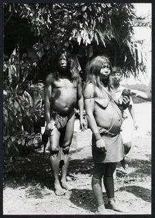 Confluent du Camopi et de l'Oyapoque