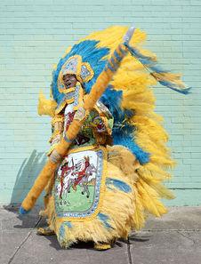 Mardi Gras Indians 2