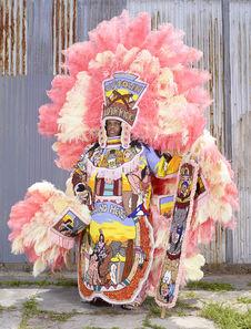 Mardi Gras Indians 21