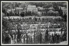 Mitla, paysage de cactées, vue prise du haut de la pyramide