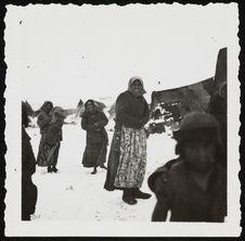 Tsiganes de la tribu des sept familles