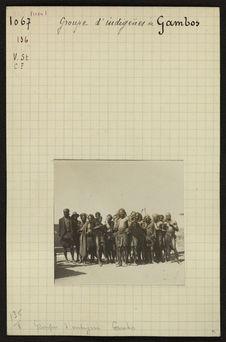 Groupe d'indigènes de Gambos