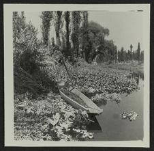"Xochimilco : jardins flottants (""chinampas"")"