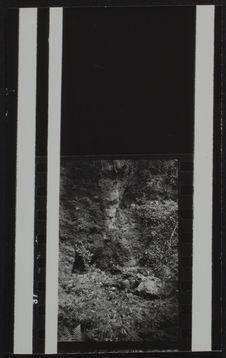 Sans titre [paysage et vases]