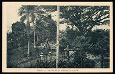 Gabon - Un coin de la station de Samkita