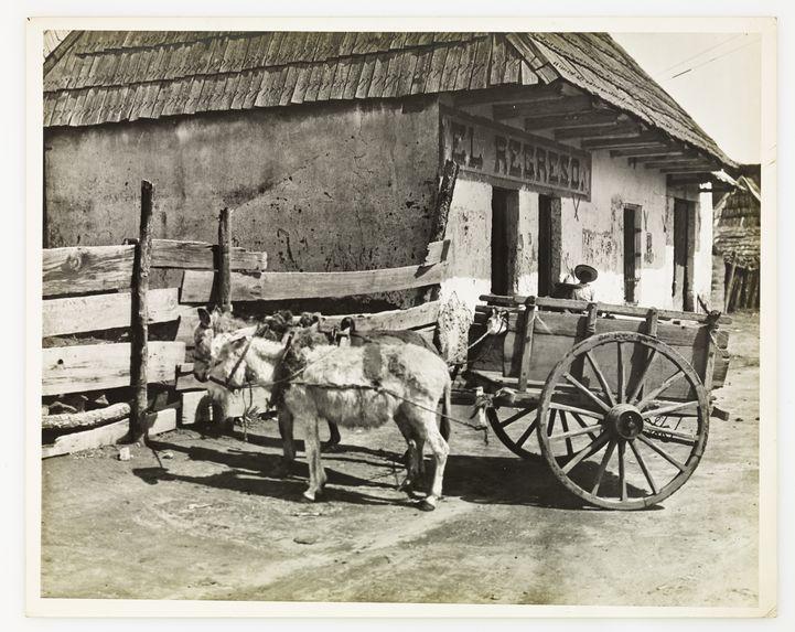 Carro de trabajo en Veracruz