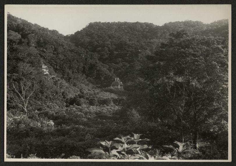 Palenque, Temple del Sol, vue prise du Grupe Norte
