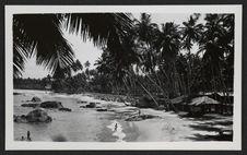 Colombo, villaggio di pescatori