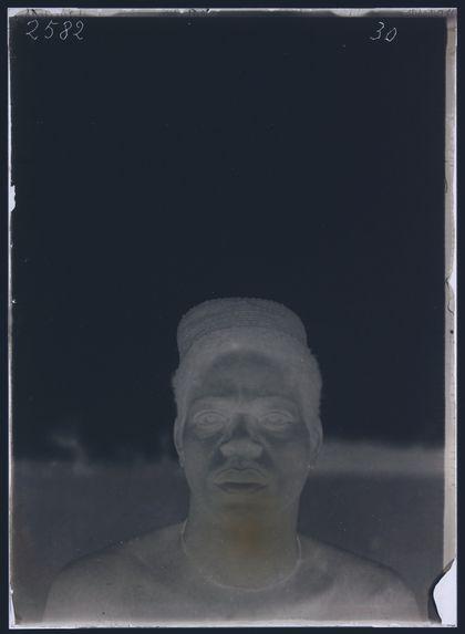 Macaya, (feuille)