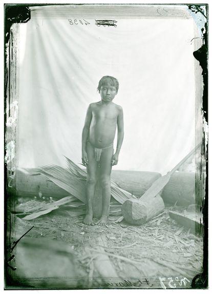Jeune Guaraouno