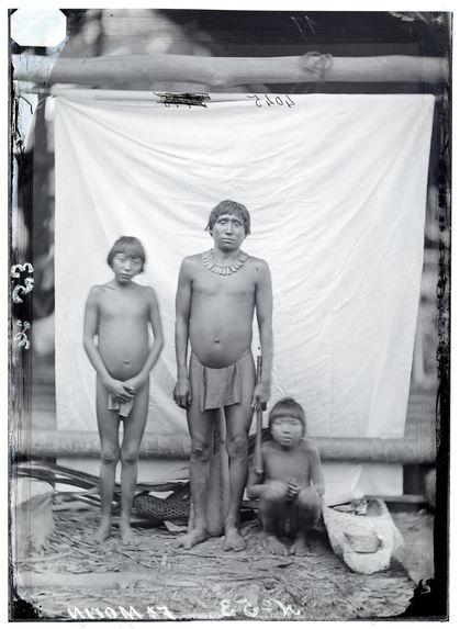 Indiens Guaraouno