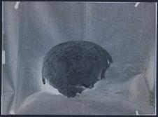 Crâne de la grotte néolithique de Bas Moulin