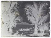 Les cocos sont transportés aux sampans